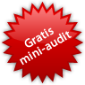 gratis website check